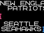 Super Bowl XLIX Banner