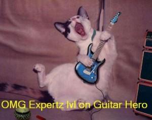 cat_guitarhero