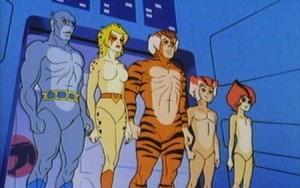 Thundercats: Panthro, Cheetara, Tygra, Wilykat, Wilykit. Not pictured: a yiffpile