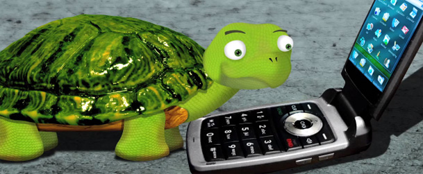turtlecalls