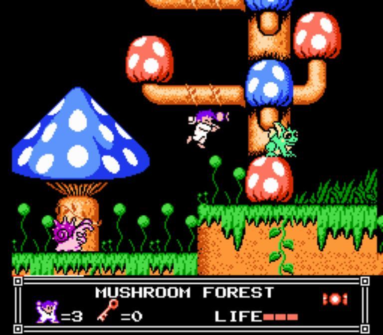 Nemo Mushroom Forest