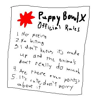rules-and-gameplay-of-puppy-bowl-ten